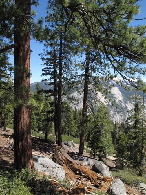À la sortie du parc Yosemite
